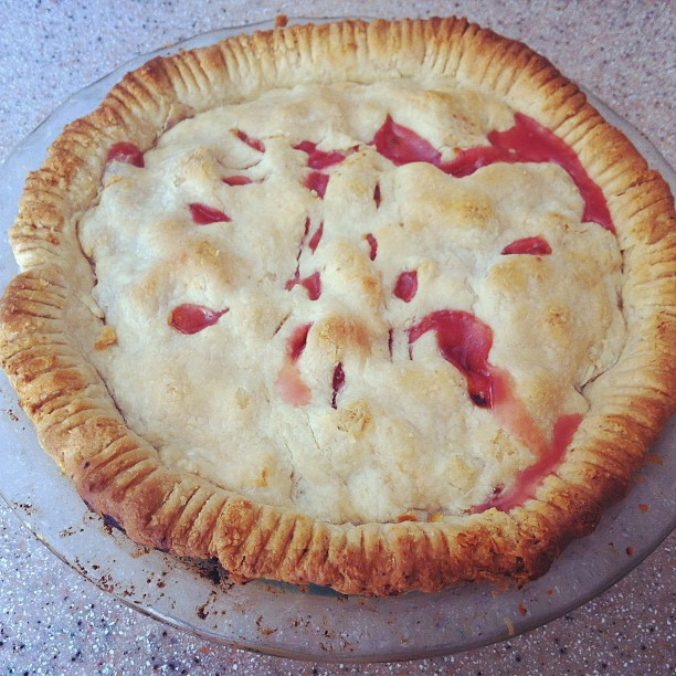 Double-crust rhubarb pie, trimmed with fork tines, glass pie plate, bubbling red juices.