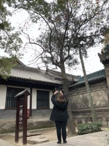 Nancie at Great Mosque in Xi'an, photographing huge persimmon tree filled with fruit